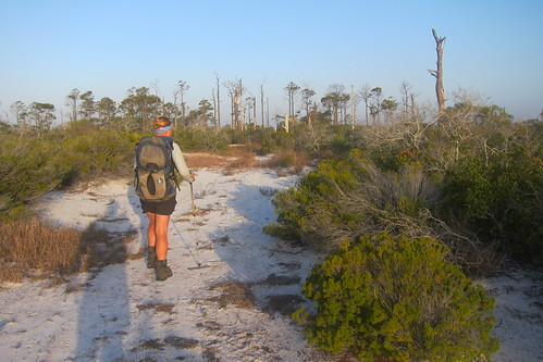 Florida Trail 204