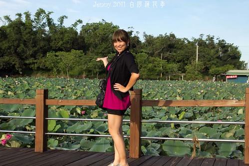 20110620白河蓮花季-5635