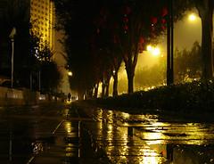 Another Rainy Night