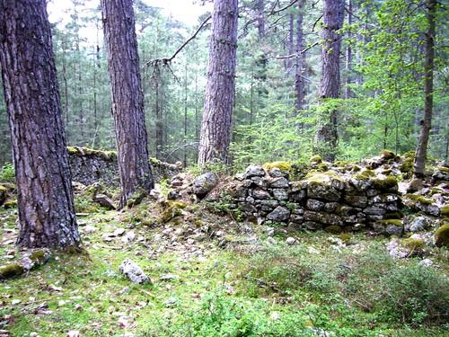 Ruines de la maison forestière de San Leonardo en été