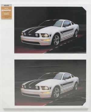Untitled (Mustang), 2008 by Josephine Meckseper