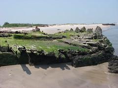 IMGP0214 (paulsyak) Tags: kayak lewes delawarebay beachplumislandshipwreck