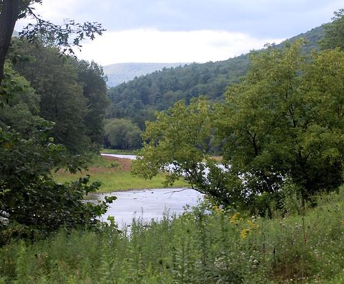 AtCammal on Pine Creek Trail