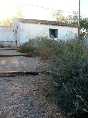 jardim 4581