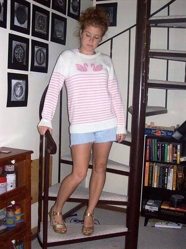 9-13-08 Swan sweaterz