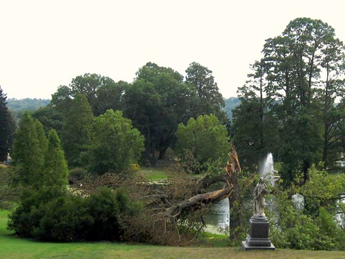 Wind storm damage at Spring Grove Cemetery