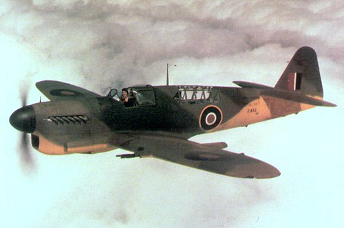 Warbird picture - Fairey_Firefly_I