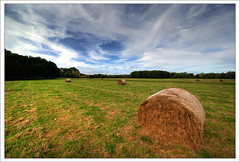 Phoenix Park (Janek Kloss) Tags: park city ireland sky dublin phoenix grass photo fotograf photos cut dramatic tourist irland eire fotka round cutting fotografia bales mapping tone attraction zdjecia irlanda mapped ierland balle j23  rotoballe zdjecie fotki irlandia   hwdp  lirlande anawesomeshot fotosy    moli516