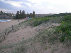 The front of the dune (cobalt.penguin) Tags: beach dunes sydney peninsula avalon barranjoey