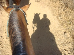 Day 052 - Horseback Riding