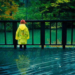 Autumn Rain (TheJbot) Tags: lake green rain japan deck  lonely raincoat jbot supershot inagako thejbot