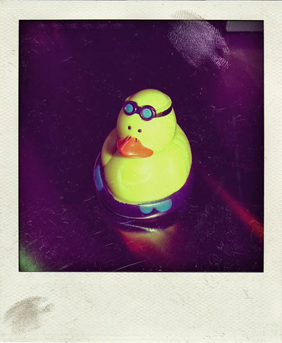 Rubber Duck_Polaroid by brionline.