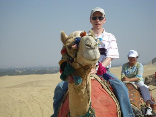 Camel Ride 23