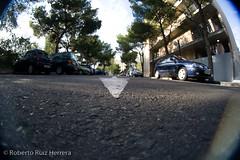wrong way (Berts @idar) Tags: calle zaragoza callejeando espaa peleng8mmfisheye canoneos400ddigital