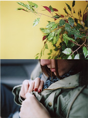 Leafhead (artistofmimicry) Tags: camera red plant tree slr film girl leaves yellow wall scarf 35mm office asahi pentax k1000 fake holly plastic nails jacket 400 button wife asa riteaid 1thou