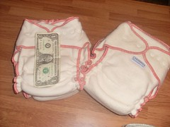 Crickett's Fluff (iCandiKnits) Tags: cloth diapers hemp clothdiapers cricketts
