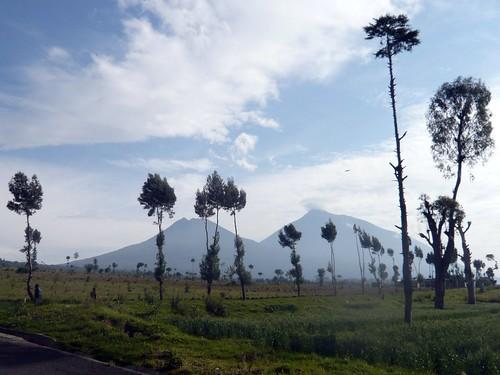 Virunga range