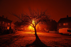 Night fog (ashley.gill15) Tags: uk friends england fog nikon vivid surrey nightshots uc guildford fabulous 1001nights breathtaking iloveit fiatlux blueribbonwinner d40 digitalcameraclub kartpostal bej nikond40 aplusphoto flickrelite platinumheartaward excapture elitephotography theperfectphotographer thebestofday funfanphotos qualitypixels llovemypics flickrlovers breathtakinggoldaward nikonflickraward panoramafotogrfico micarttttworldphotographyawards micartttt artofimages hairygitselite flickraward