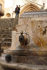 P1080926 Fuente de la Catedral (calafellvalo) Tags: nose catedral silvestre narigudo nase nas tarragona nariz narices nassos lhomedelsnassos calafellvaloyahoocom