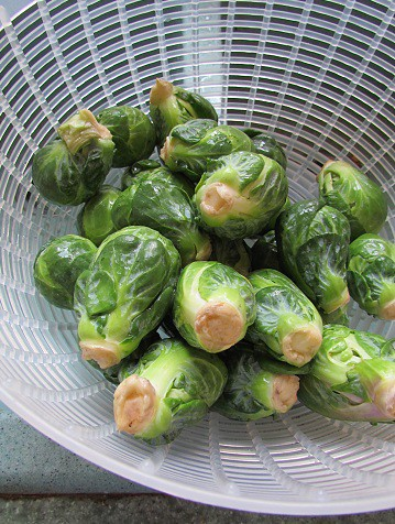 Brussels Sprouts Shower