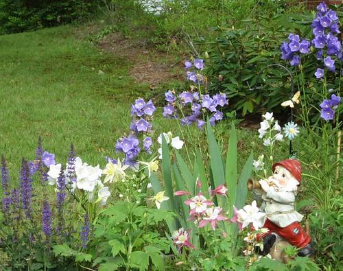 5.26.11 - The Garden Gnome in his natural habitat