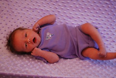 Purple (Joe Shlabotnik) Tags: baby home purple violet 2008 faved march2008 justviolet heylookatthis bestofviolet