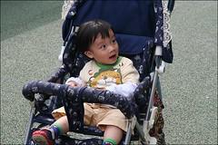 新竹市立動物園33