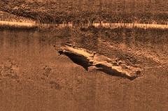 Sidescan sonar image - unidentified vessel