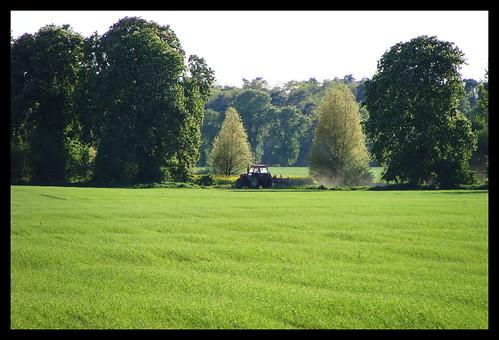 springtime tractor