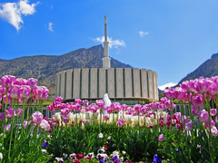 Provo LDS Temple (Kendra_) Tags: church temple utah lds provo thechurchofjesuschristoflatterdaysaints ldstemple 5photosaday provoutah diamondclassphotographer