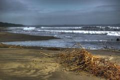 Despus de la tormenta. (Luis Vsquez [ Luis3D ]) Tags: ocean chile sea sky beach clouds 50mm mar lluvia nikon playa arena cielo nubes f18 arauco raices