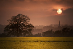 Point To The Light (Canonshot Mole) Tags: uk sunset sun church pool field yellow clouds landscape twilight dusk spire explore magichour harewoodhouse silouettes otley rapeseed arthington top500 rapeseedoil 100favourites