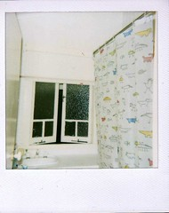 * 5 (lauren.kate) Tags: sexy love ass home window girl nude polaroid bathroom shower bath teen