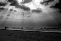 Rays of Light (Nwbama) Tags: light bw sunlight beach nature water rays nwbama steveminor