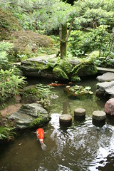 IMG_2573 (avsfan1321) Tags: orange plants house fish green nature water rock japan stone garden pond koi samurai kanazawa steppingstone nomura samuraihouse ishikawaprefecture nomurahouse kanazawashi nomurasamuraihouse