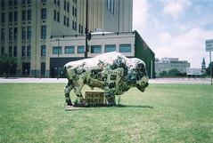 """News Buff"" Buffalo (aimeedars) Tags: aimeedars summer 2004 buffalo spiritofthebuffalo oklahoma ok publicart paintedbuffalo paintedsculpture painted statue"