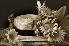 Mon Chapeau de Jardin (Jooliree) Tags: bw stilllife france hat sepia scarf french petals straw monotone sunflowers duotone laforge fgc week8 flickrgolfclub 7daysofshooting monomonday