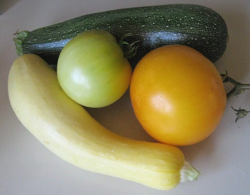 Zucchini and Yellow Tomatoes