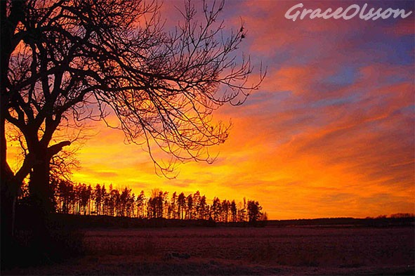 sunset - Yterrela - Vasteras - Sweden