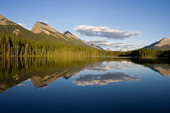 (Jon Christall) Tags: park trees sky mountain lake canada mountains reflection nature forest landscape rockies nationalpark jasper bluesky unesco worldheritagesite explore alberta rockymountains peaks   unescoworldheritage jaspernationalpark  icefieldsparkway canadianrockies     flickrexplore   honeymoonlake  superaplus aplusphoto