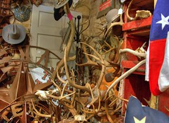i am all about neatness & organization (joshhikes) Tags: wallpaper antlers 2008 joshhikes imgp0881tif personalnoncommercialuseonly