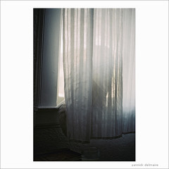 i know, George, i know (Yannick Delmaire) Tags: white film window cat dark tail curtains analogue yannick delmaire yannickdelmaire