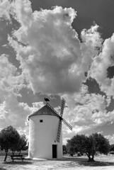 (And Finally) - La Mancha has Windmills :-)) (Eve Livesey) Tags: bw windmill nikon conversion lamancha olivetrees molina polarisingfilter d80 evelivesey holidaysvacanzeurlaub betterthangood damniwishidtakenthat