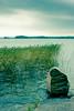 20080903 (tiltti) Tags: autumn beach finland kallio kivi syksy ranta kirkkonummi kaisla båtvik btvik