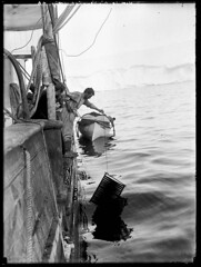 "Frank Hurley washing cinematograph film on the ""Aurora"" (State Library of New South Wales collection) Tags: sea blackandwhite selfportrait man film ice expedition water boat mar barco ship australian antarctica cleaning clean wash maritime iceberg bateau exploration 1914 homem washing hurley 1911 silvergelatin filmprocessing steamyachts icebreakers auroa statelibraryofnewsouthwales frankhurley xmlns:foaf=httpxmlnscomfoaf01 cinematographfilm foaf:depicts=httpnlagovaunlaparty486588"