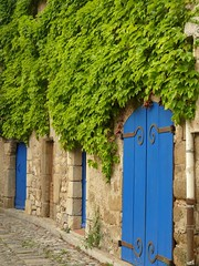 In Lagrasse (pauline_iow) Tags: blue france village ivy cobbles lagrasse languedocroussillon colourartaward