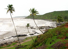 rocky beach (rohini_kamath) Tags: copyright india nature goa monsoon rohini kamath ifornature rohinikamath