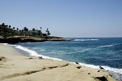 la jolla (Nicola Zuliani) Tags: california sea usa beach coast sand sandiego lajolla nizu nicolazuliani nnusa wwwnizuit