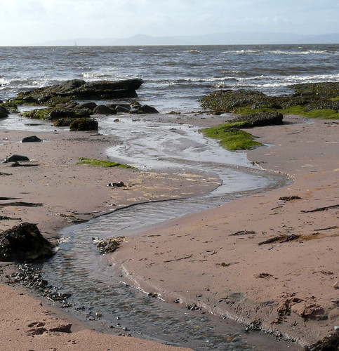 Stream on beach