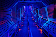 Disney - Space Mountain Star Tunnel (Express Monorail) Tags: travel blue walter vacation usa colors america wonder geotagged fun psp orlando nikon florida availablelight f14 magic dream sigma wed elias disney mickey disneyworld fantasy queue future mickeymouse imagine theme rollercoaster wish orangecounty wdw waltdisneyworld walt tomorrowland magical kissimmee themepark attractions spacemountain waltdisney d300 wdi 30mm lakebuenavista imagineering waltdisneyworldresort disneypictures disneyparks startunnel disneypics expressmonorail disneyphotos paintshopprophotox2 eticketattraction disneyphotochallenge disneyphotochallengewinner joepenniston disneyphotography disneyimages geo:lat=28418908 geo:lon=81577897 ridequeues
